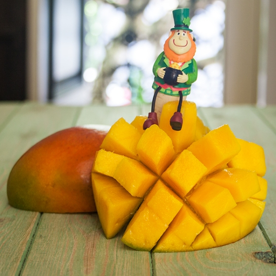 Leprechauns and mangos
